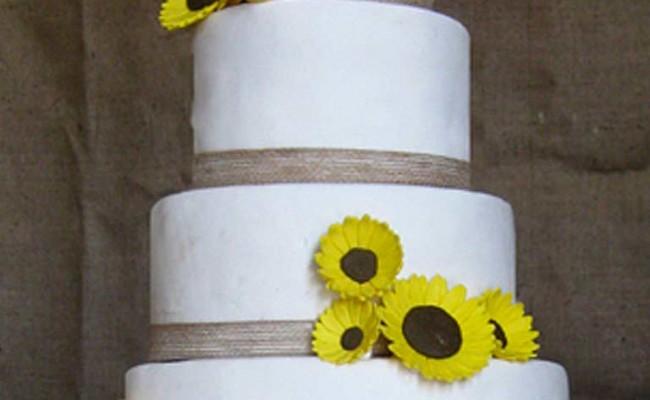 eventos bodas tartas con fondant PAblo y Laura